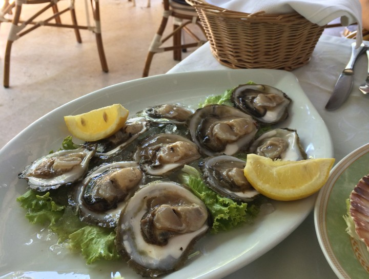 Platter of Oysters fresh from the sea.