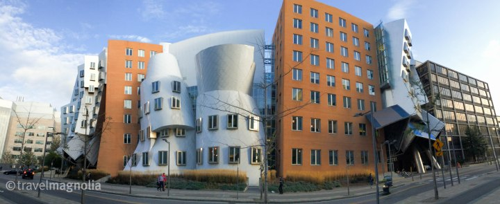 MIT, Stata Center, Frank Gehry