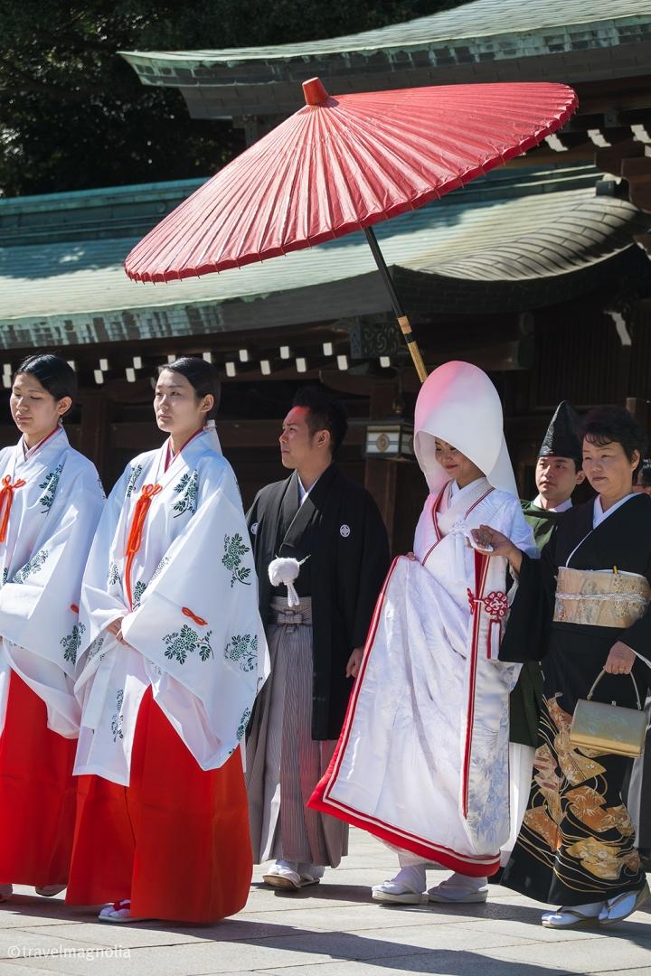 Shinto Wedding, Meiji Shrine, Tokyo