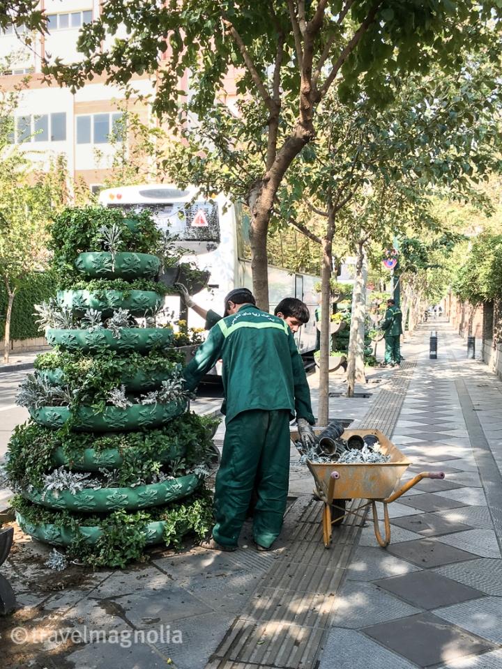 Tehran_Gardening