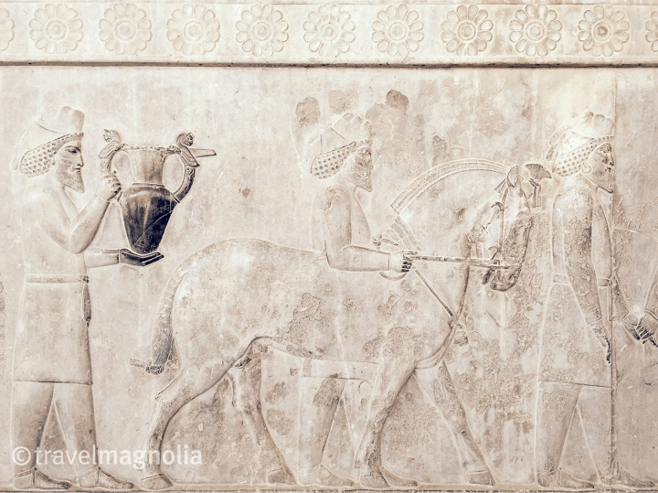 Armenian Tribute Bearer_Apadana of Darius__Persepolis