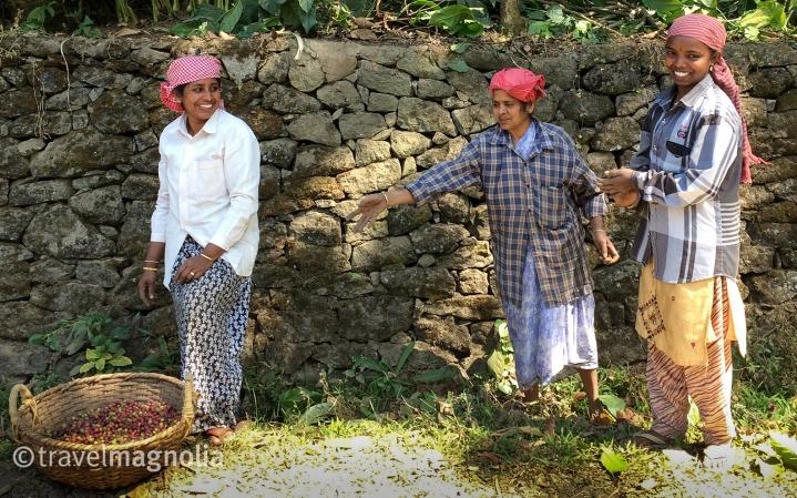 CoffeePlantationWorkers