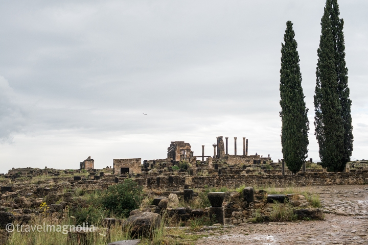 Volubilis Overview