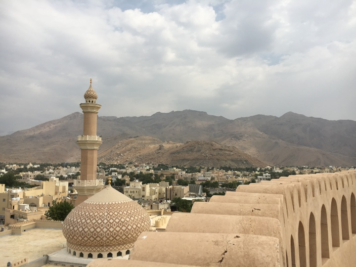 view-over-nizwa
