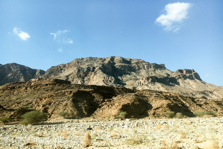 road-to-muscat-2
