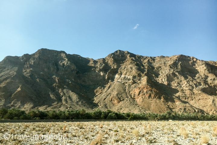 road-to-muscat